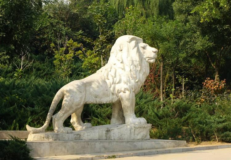狮子竞博投注的布置与玻璃钢竞博投注的特征